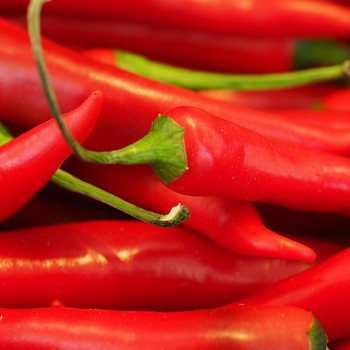 Red Hot Chile Peppers May Help You Live Longer