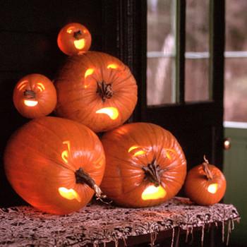 Nosey Pumpkins