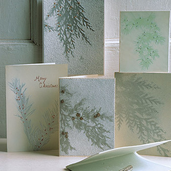 Evergreen Cards