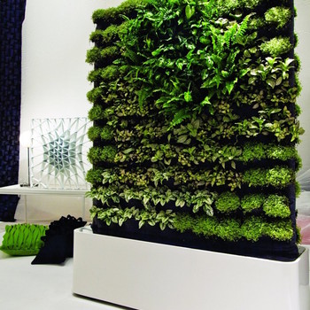 Moss Wall Art Isn't Just Pretty, It's Good for You Too