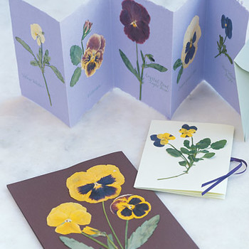Pressed Pansy Projects: Personalized Stationery