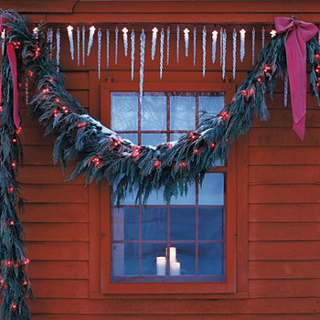 Red-Berry-Light Garland
