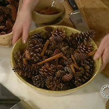 Spicy Pine Cones
