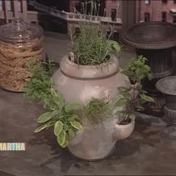 Strawberries and Pots