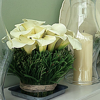 Lilies and Needles Centerpiece