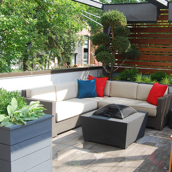 From Barren to Lush: A Rooftop Garden Before and After