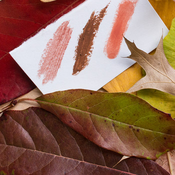 Winter's Best All-Natural American-Made Lipstick and Lip Gloss Colors