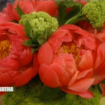 Beautiful Peony Arrangements with Manhattan Florist Emily Weaver