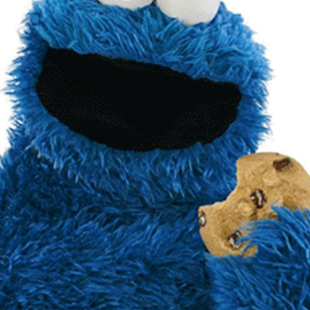 Happy Birthday Cookie Monster!
