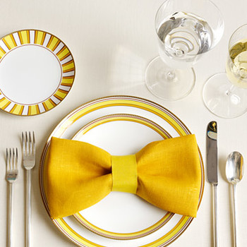 The Art of Napkin-Folding: One Napkin, 15 Ways