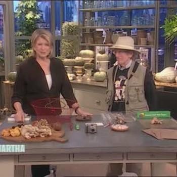Mushroom Collectors Tools