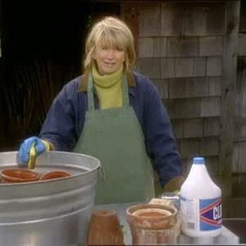 Sterilizing Your Clay Pots