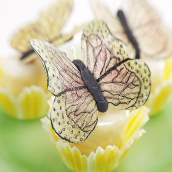 Petits Fours with Butterflies