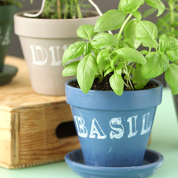 Chalkboard-Painted Herb Planters