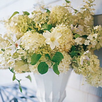 Flower Arrangement Ideas | Martha Stewart