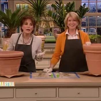 Faux Terracotta Plastic Pots