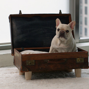 Watch: Pet-Bed Suitcase