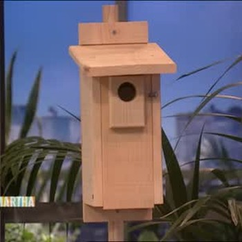 How to Make a Blue Bird House