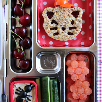 4 Expert Tips For Packing Lunches for Summer Camp