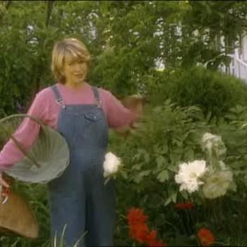 Walking Through Martha's Garden