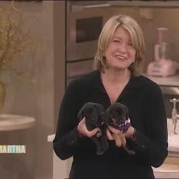 Animal Care with Gloria Estefan