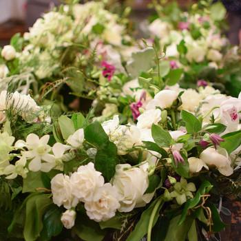 flowergirl-nyc-lm-visit-0316-27.jpg (skyword:244858)