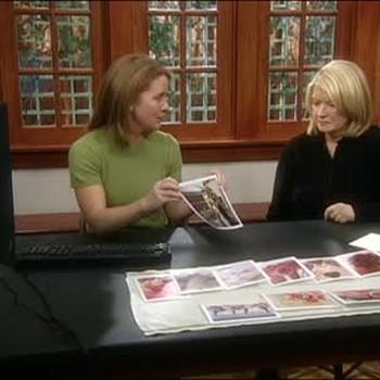 How To Use Martha Cards Website