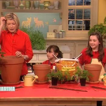 Kid-friendly Container Gardening