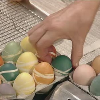 Natural Dyeing Easter Eggs Pt. 2
