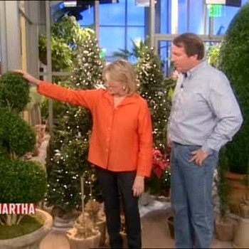 The Different Kinds of Topiaries