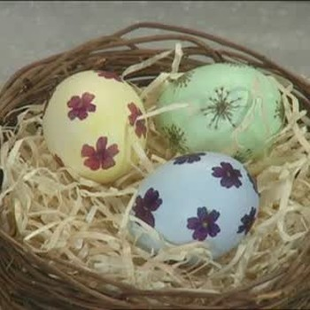 Fresh Flower Decorated Egg Shells