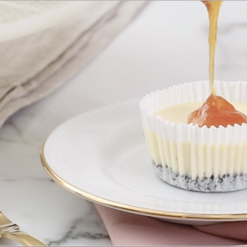 Mini Cheesecake with Apricot Jam