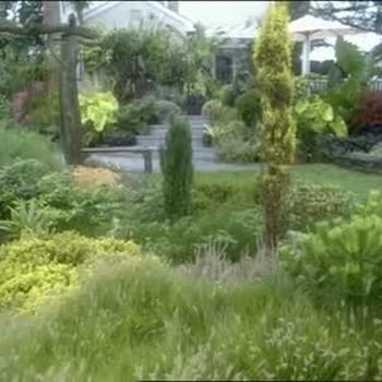 Schrader Garden, A Tropical Paradise