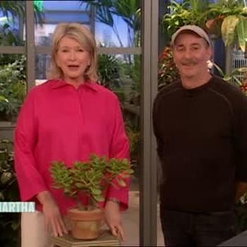 Easy Care Plants with Dennis Schrader
