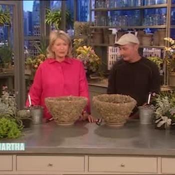 Rhipsalis Planter with Dennis Schrader
