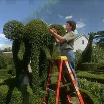 A Visit To Green Animals Topiary Garden