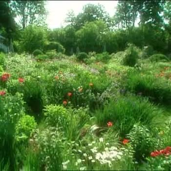 Turkey Hill Gardens With Martha Stewart