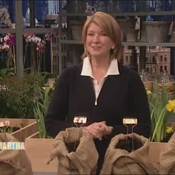 Martha Stewart Answers Audience Questions