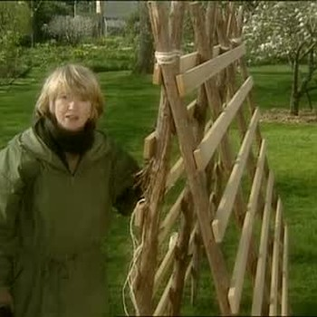 Building a Trellis for Vegetable Gardening