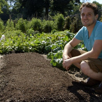 Tips for Planting Vegetables in Late Summer
