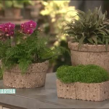 How to Create Your Own Hypertufa Pots, Part 1