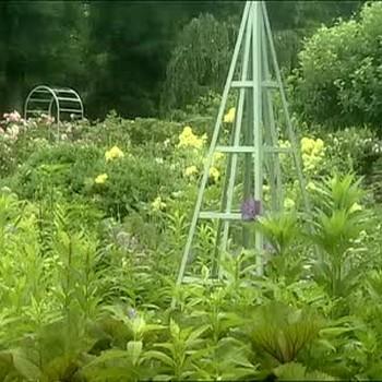 Adding Pyramidal Steel Tuteurs to Your Garden