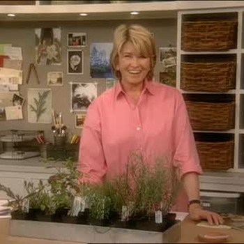 Ask Martha: Hot Peppers, Cacti And Wild Flowers
