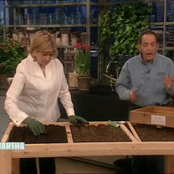 How to Plant a Salad Table with John Traunfeld