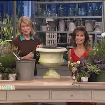 Planting a Fall Container Garden with Susan Lucci