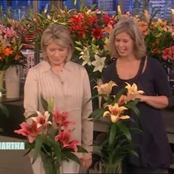 Lilytopia Flower Showcase with Dorien van den Berg