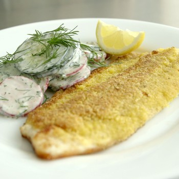 cornmeal-crusted_trout_with_cucumber_and_radish_salad.jpg
