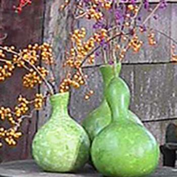Bottle-Gourd Vase