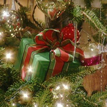 Martha Stewart's Christmas Special