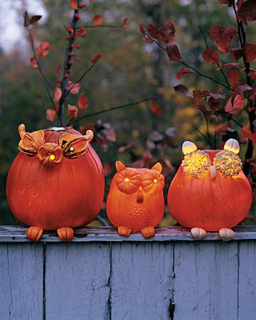 Cat Pumpkins
